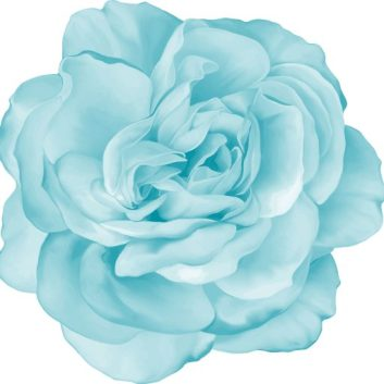cropped-blue-flower.jpg