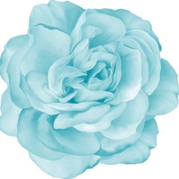 cropped-blue-flower.jpg